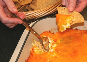 Buffalo Chicken Dip #9869E7